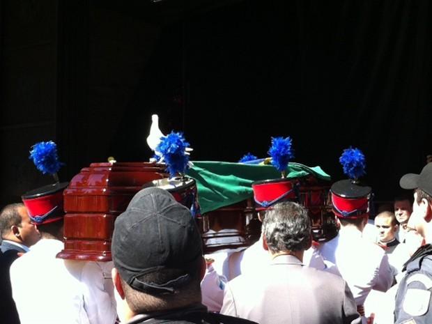 Imagem do G1 da pomba que permaneceu sobre o caixão de Dom Eugênio Sales