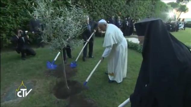 Momento final do encontro foi marcado com o plantio de uma oliveira