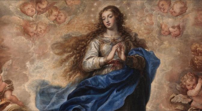 Hoje é dia da Imaculada Conceição